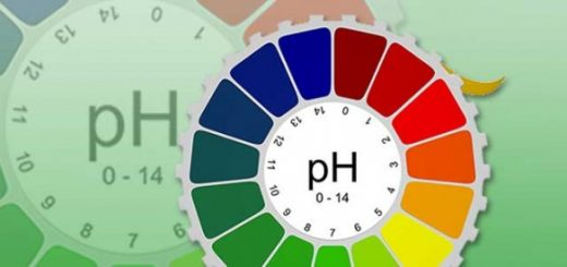 PH balance in your body